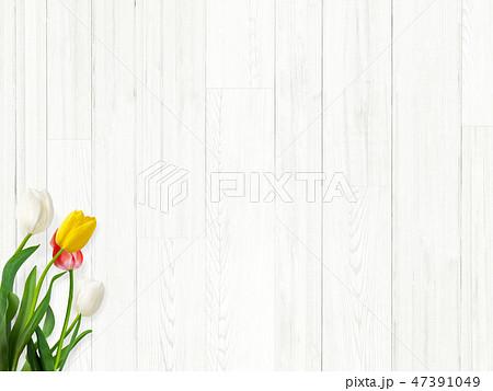 背景-白壁-木目-白木-春-チューリップ 47391049