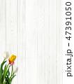 木目 壁 白のイラスト 47391050