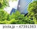 高層ビル ビル 新緑の写真 47391363
