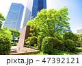 高層ビル ビル 新緑の写真 47392121