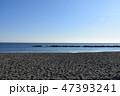 冬の湘南ひらつかビーチパーク 47393241