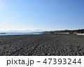 冬の湘南ひらつかビーチパーク 47393244