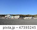 冬の湘南ひらつかビーチパーク 47393245