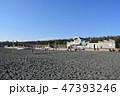 冬の湘南ひらつかビーチパーク 47393246