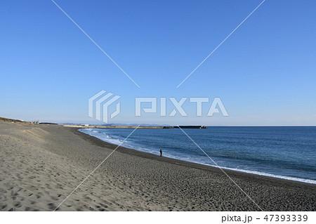 冬の湘南ひらつかビーチパーク 47393339