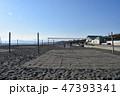 冬の湘南ひらつかビーチパーク 47393341
