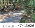[静岡県] 三保の松原 47413926