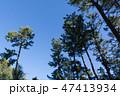 [静岡県] 三保の松原 47413934