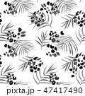トロピカル 熱帯 ヤシのイラスト 47417490