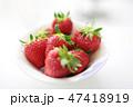 真っ赤なイチゴ 完熟 女峰 47418919