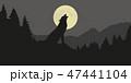 おおかみ オオカミ 狼のイラスト 47441104