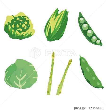 春野菜・緑黄色野菜 イラストセット1 -green yellow vegetables set1- 47456128
