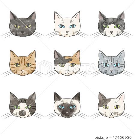 猫ねこネコ 白のイラスト素材