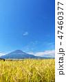 富士山 空 秋の写真 47460377