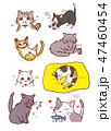猫 動物 種類のイラスト 47460454