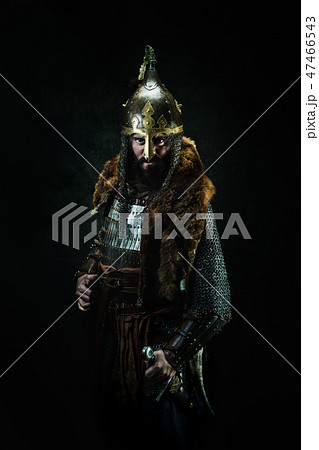 Portrait of a medieval warrior 47466543