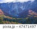 大山 自然 風景の写真 47471497