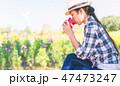 りんご アップル リンゴの写真 47473247