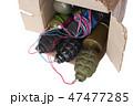 BOX ボックス メールの写真 47477285