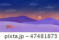 砂漠 夕方 夕のイラスト 47481873