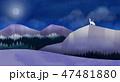おとぎ話 森林 林のイラスト 47481880