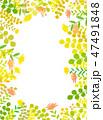 木漏れ日 葉 花畑 テクスチャー 背景素材 47491848