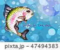 水の中のニジマス 47494383
