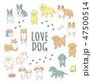 手書きの犬イラストセット 47500514
