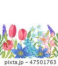 花 春 泉のイラスト 47501763