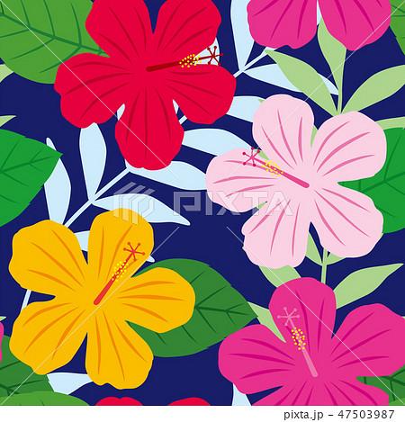 パターン 花柄 ハイビスカス柄 ネイビー 47503987