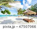 ビーチ 海 椰子の木の写真 47507066
