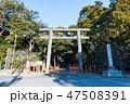 息栖神社 東国三社 神社の写真 47508391
