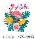 アロハ ふらみんご フラミンゴのイラスト 47514943