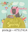 ねこ ネコ 猫のイラスト 47517414