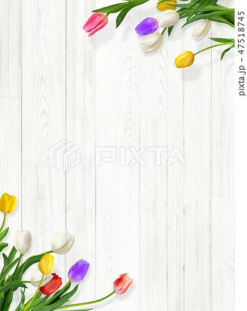 背景-白壁-木目-白木-春-チューリップ 47518745