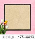 壁 チューリップ フレームのイラスト 47518843