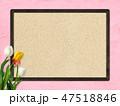 壁 チューリップ フレームのイラスト 47518846