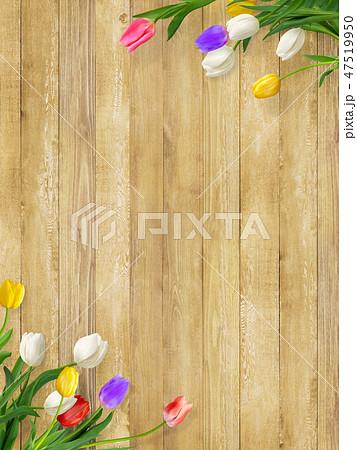背景-花-壁-板-木目-茶-チューリップ-春 47519950