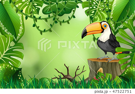 A toucan in nature green template 47522751