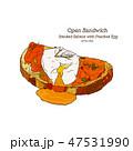 たまご 卵 玉子のイラスト 47531990