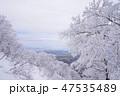 風景 山 大山の写真 47535489