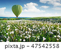 Air ballon above field with flowers 47542558