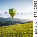 Air ballon above field with flowers 47542565