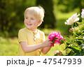 花 芽 蕾の写真 47547939