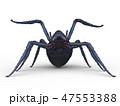 蜘蛛 47553388