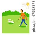 犬と散歩する男性 47558373