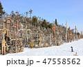 十字架の丘(リトアニア/シャウレイ) 47558562