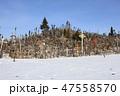 十字架の丘(リトアニア/シャウレイ) 47558570