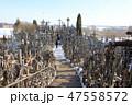 十字架の丘(リトアニア/シャウレイ) 47558572