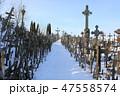 十字架の丘(リトアニア/シャウレイ) 47558574